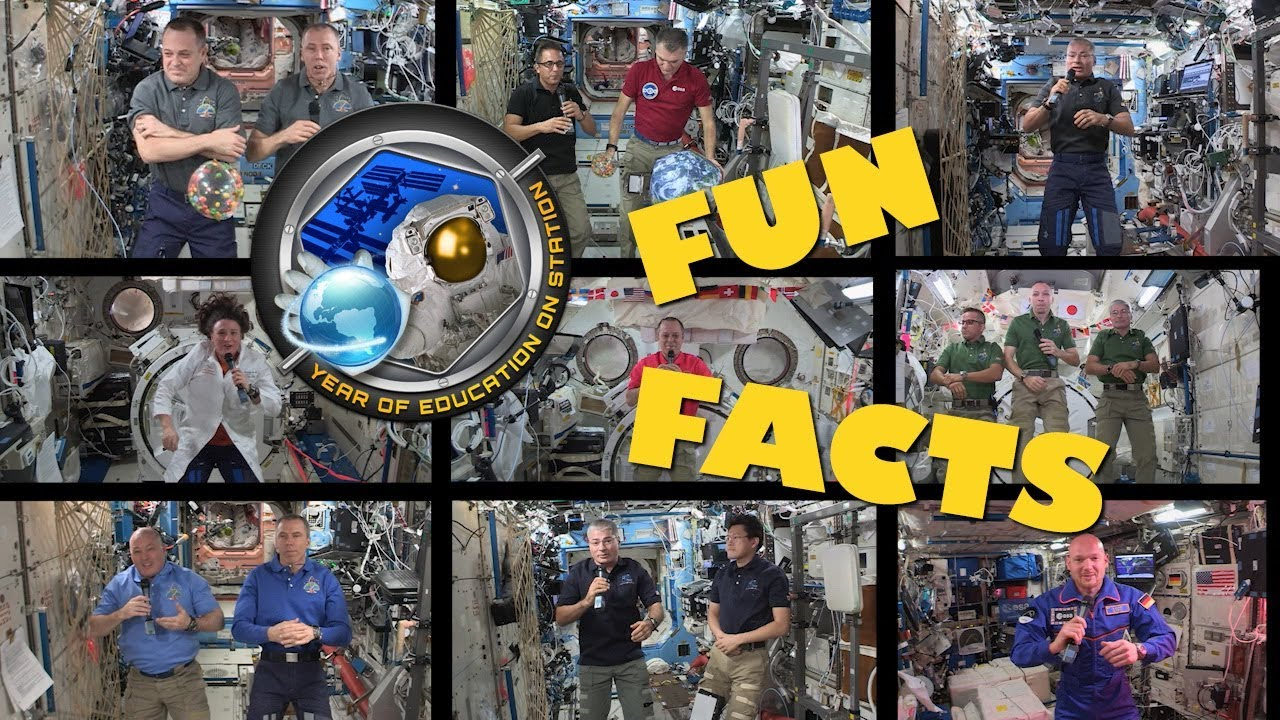 Year of Education on Station: Fun Facts