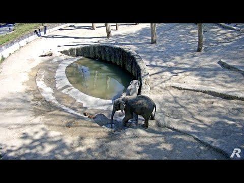 öffnungszeiten zoo wuppertal