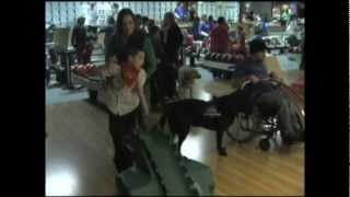 Assistance Service Dogs & Special Kids Bowling