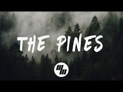 Roses & Revolutions - The Pines (Lyrics / Lyric Video) Evan Gartner Remix