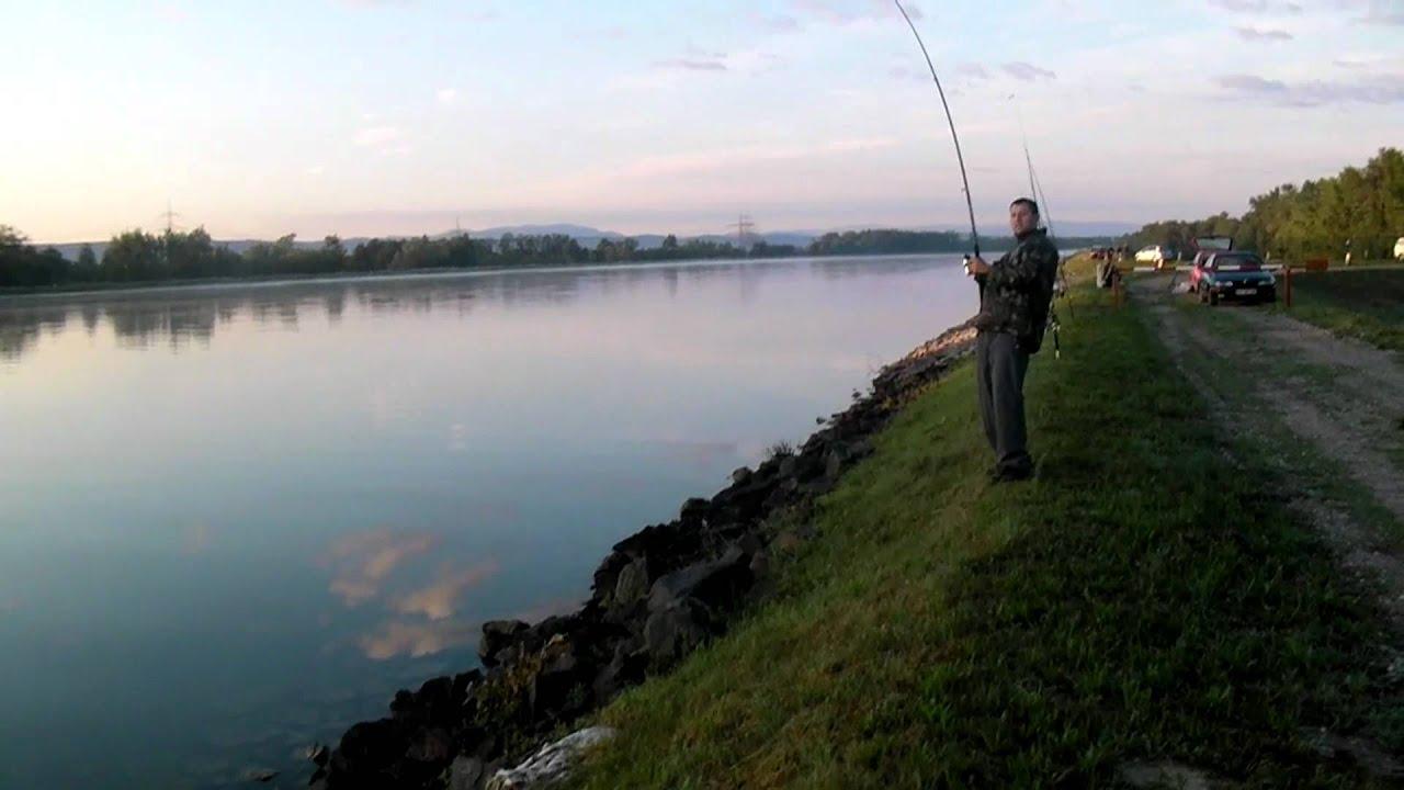 рыбалка на эдерзее германия земля гессен