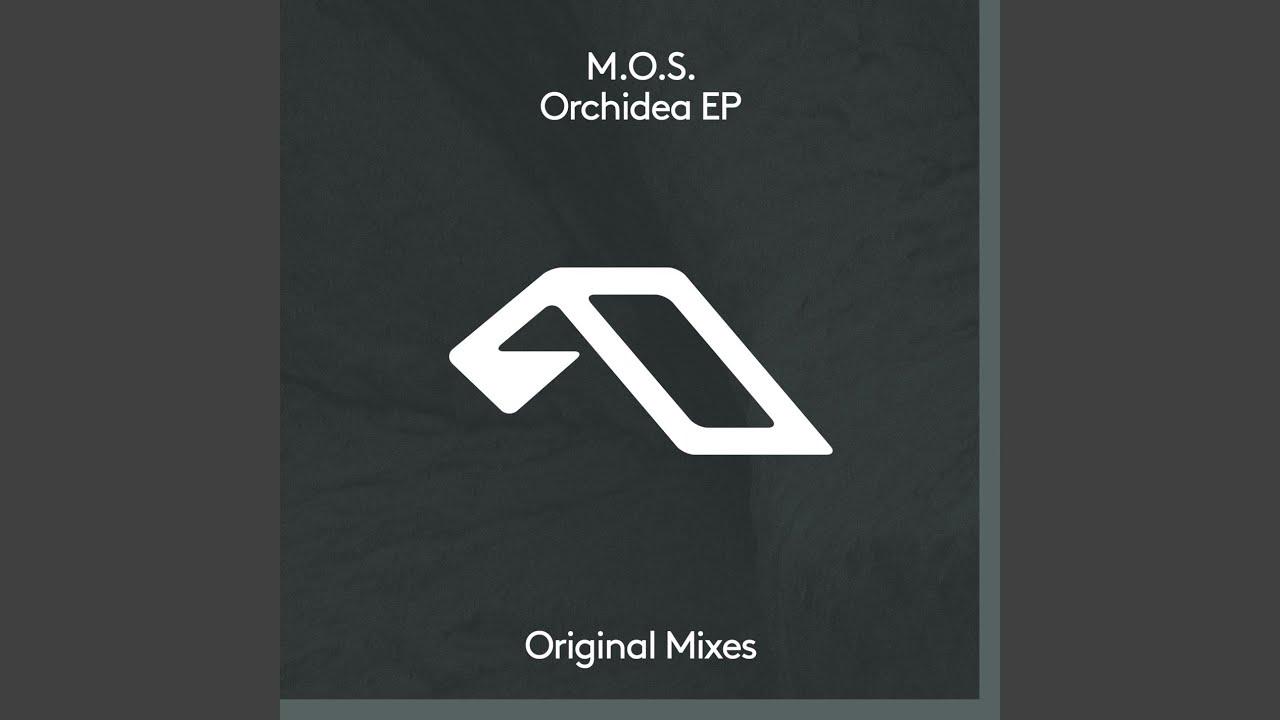 Download Orchidea