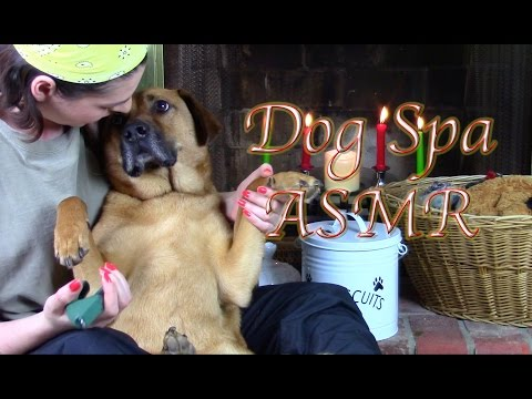Soggy Pawz Doggy Spa: (ASMR for Dogs & People Who Like Dogs)