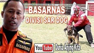 YUK GABUNG SAR DOG BASARNAS !!!