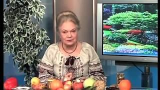 Наталя Земна - Перепелині яйця - ЛОДТРК (м. Львів)