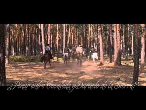 La Película Doctor Zhivago: Las Escenas rodadas en la zona de Pinares de Soria