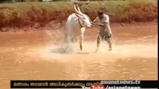 Kalapoottu Competition at Malappuram Edapal without obeying court order