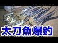 堤防からルアーで太刀魚が大爆釣!! の動画、YouTube動画。