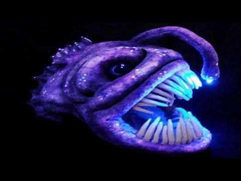 Top 10 CREEPY DEEP SEA Creatures Recently Discovered
