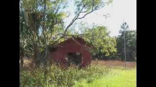 abandon house titusville 1