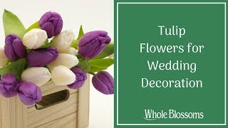Purchase Beautiful Tulip Flowers for Wedding Decoration