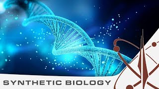 Biohacking bacteria - Discovery 2.02