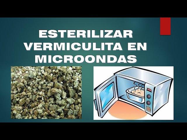 Esterilizar vermiculita microondas