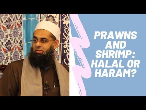 Q&A: Prawns And Shrimp: Halal Or Haram? Answered By Mufti Abdur Rahman Ibn Yusuf