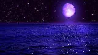 Calming Music Healing 24/7 💤   Sleeping Music 528Hz   Positive Energy Cleanse   Sleep Deep Music