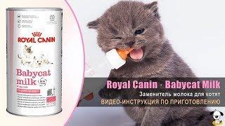 Заменитель молока для котят · Royal Canin Babycat Milk · Инструкция по приготовлению