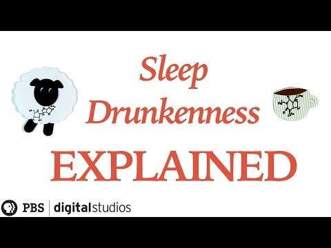 Sleep Drunkenness Explained