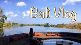 [Bali Vlog] 발리 럭셔리 아야나 리조트 브이로…