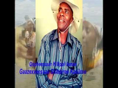 Download ZARIHUN WADDAJOO  fi Gazexxeessaa shibbiree kasiioroo