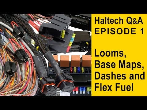 Patch Looms, Base Maps, Dashes and Flex Fuel - Haltech Q&A ... on