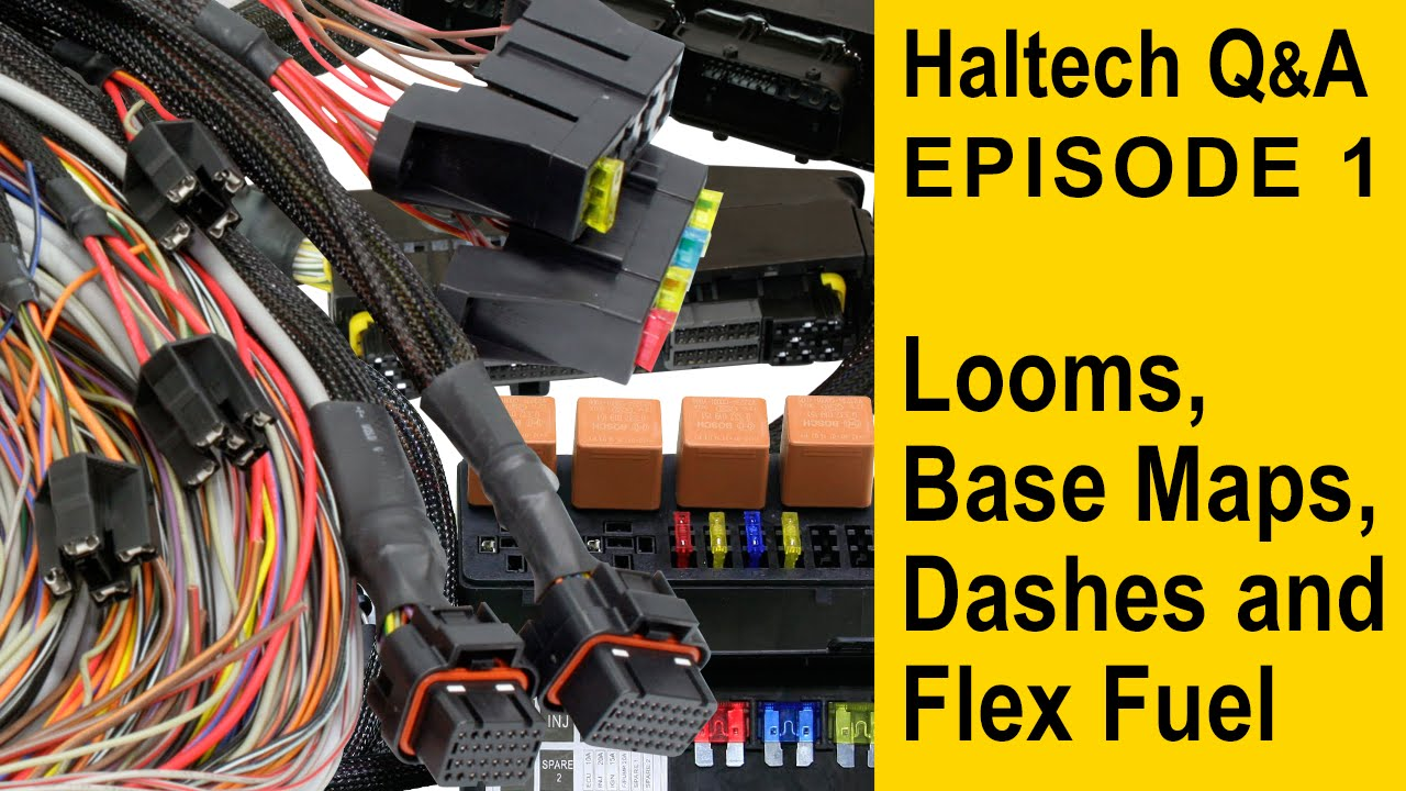 maxresdefault patch looms, base maps, dashes and flex fuel haltech q&a episode haltech elite 550 wiring diagram at eliteediting.co