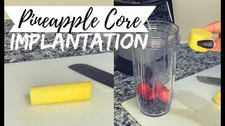 Pineapple Core for Implaฑtation | TTC Journey