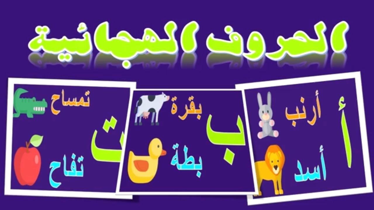 انشودة الف ارنب ، ألف أسد آ آ آ - تعليم الحروف الهجائية للصفوف الاولى