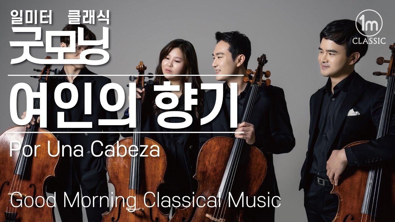 🔆굿모닝 클래식 | 여인의 향기 Por Una Cabeza | 아침에 듣는 음악 | 조용한 음악 | 클래식 명곡 | 명상음악 | 편안한 음악 | 힐링클래식