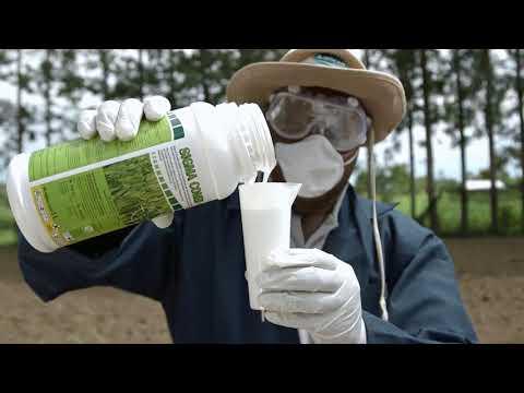Shamba Shape Up Sn 08 - Ep 03 Fish Feed, Herbicides, Solar System (Swahili)