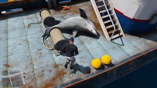 GTA 5 - Lấy tàu đánh cá đi câu trúng cá mập và cơn sóng thần làm chìm thành phố   ND Gaming