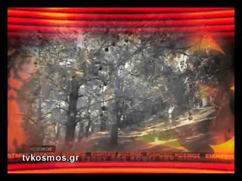 ΒΑΜΒΑΚΙΑΣΗ ΠΑΤΜΟΣ TVKOSMOS