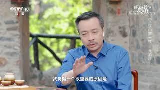 [跟着书本去旅行]黄鹤楼转变成观赏性楼台的原因| 课本中国