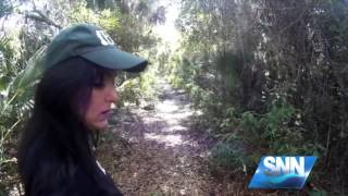 SNN: Bigfoot sightings in Myakka State Park