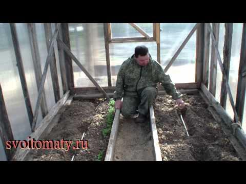 видео: Как организовать капельный полив в теплице