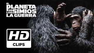 El Planeta de los Simios: La Guerra | Clip La Gripe Simia | Próximamente - Solo en cines