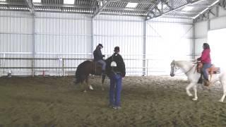 Stage équitation western par Fred Roux