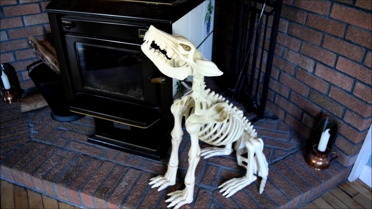 Skeleton Dog Halloween Decoration Youtube