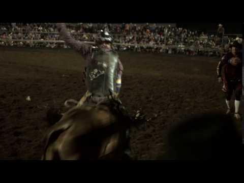 Scone & Upper Hunter Horse Festival 2016