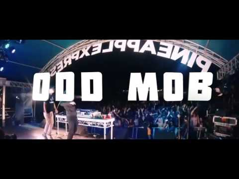 Bass in the Place 2016