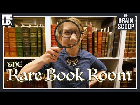 The Rare Book Room!