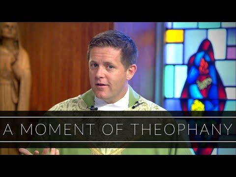 A Moment of Theophany | Homily: Father Eric Cadin