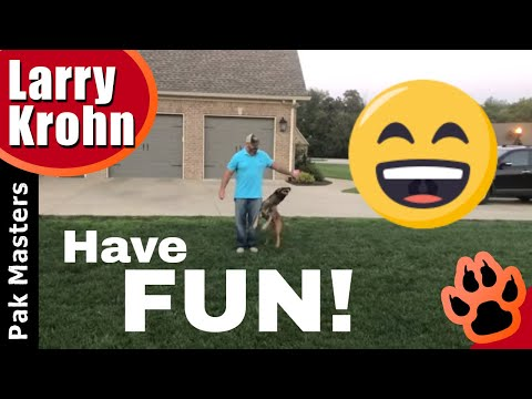 How to have fun with your dog 😀