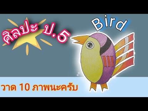 ศิลปะ ป.5 / ฝึกวาดภาพนก Bird