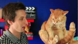 Кот, давай до свидания!