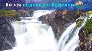 Карелия: водопад Кивач. Видео-дневники