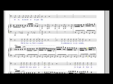 Barber of Saville - La Calunnia in C (score)