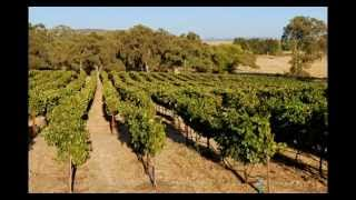 Rancho Roble Vineyard and Boutique Winery , 340 Fleming Road Lincoln Ca
