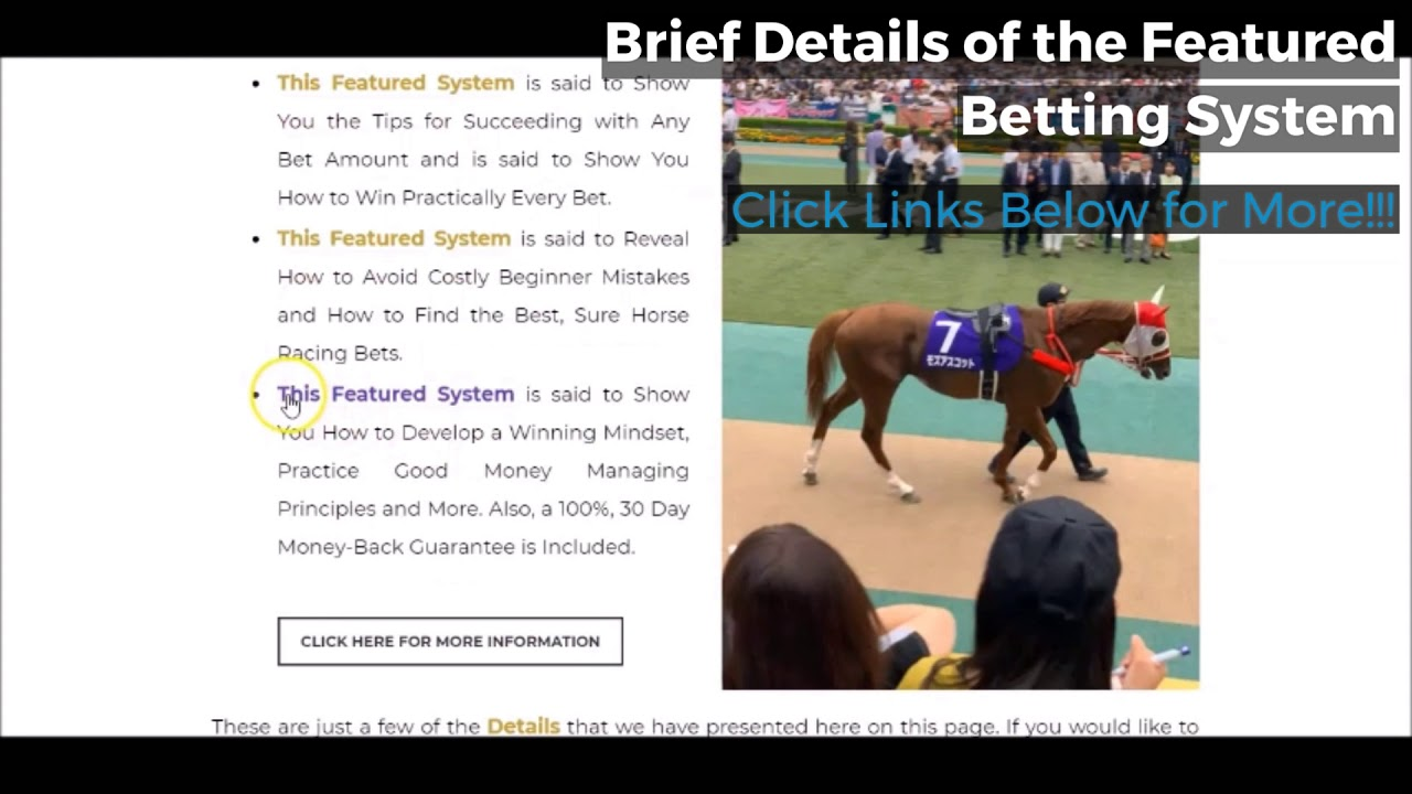 horse racing betting system reviews