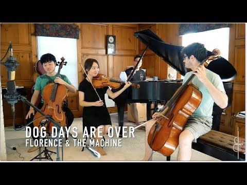 DOG DAYS ARE OVER | Florence + the Machine || JHMJams Cover No.251