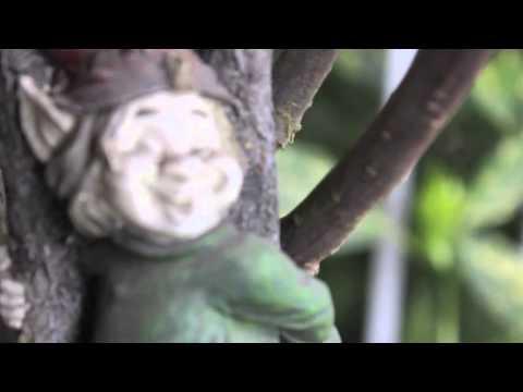 She - Ed sheeran (Lyric Video)